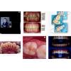 Высококачественное оказание услуг в стоматологической клинике «DENTIS»
