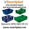 Пластиковые ящики оптом для фруктов овощей ягод